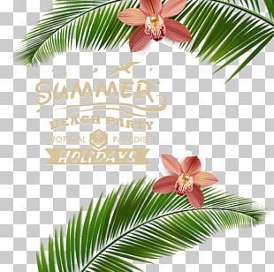 Beach Poster PNG