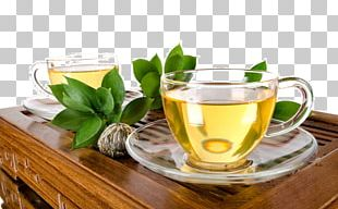 Green Tea White Tea Oolong Tea Plant PNG