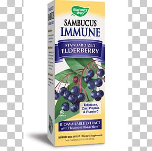 Elder Dietary Supplement Extract Berry Shrub PNG