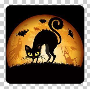 Halloween Desktop Cat S PNG