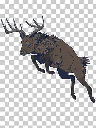 Elk Moose Reindeer Antler Fauna PNG