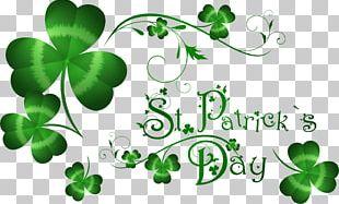 Saint Patricks Day March 17 Irish People Party Irish Diaspora PNG