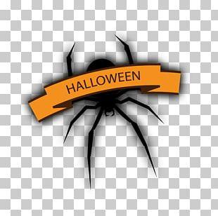 Spider Halloween Bat PNG