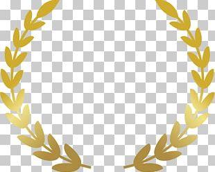 Laurel Wreath Award Bay Laurel PNG