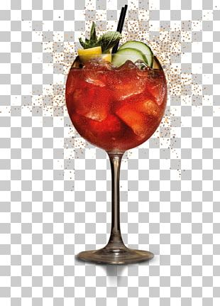Cocktail Garnish Wine Cocktail Spritzer Punch PNG