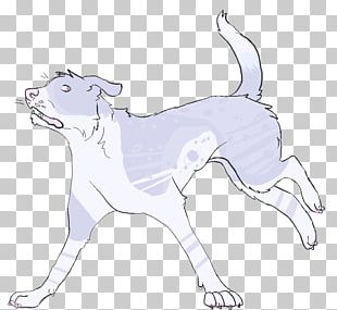 Cat Dog Breed Drawing /m/02csf PNG