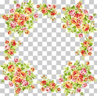 Frames Flower PNG