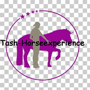 Horse Logo Beth Israel Deaconess Medical Center Brand Human Behavior PNG