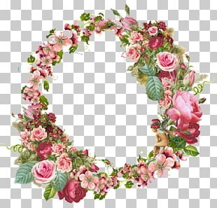 Frames Flower Vintage Clothing Rose PNG