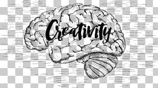 Drawing Brain Imagination Central Nervous System PNG