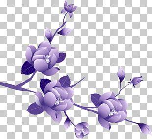 Purple Flower Rose PNG