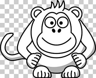 Baboons Monkey Black And White Drawing PNG