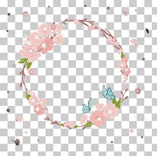 Flower Cherry Blossom Cerasus PNG
