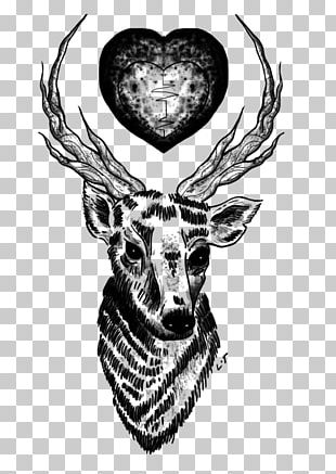 Deer Tattoo One Direction Drawing Musician PNG