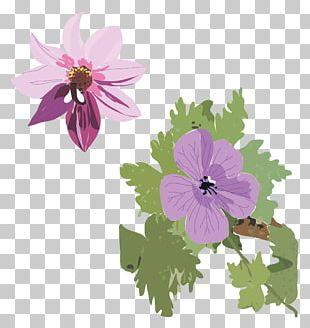 Annual Plant Violet Processing Flora PNG