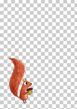 Squirrel Drawing Illustration PNG