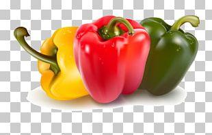 Bell Pepper Capsicum Vegetable PNG