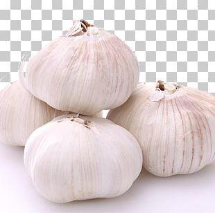 Garlic Shallot Vegetable Allium Fistulosum PNG