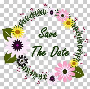 Floral Design Portable Network Graphics Flower Psd PNG