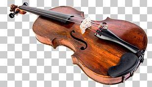 Bass Violin Musical Instruments String Instruments PNG