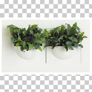 Succulent Plant Leaf Flowerpot Vase PNG