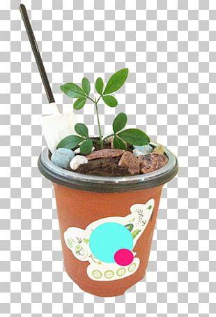 Chocolate Ice Cream Milk PNG