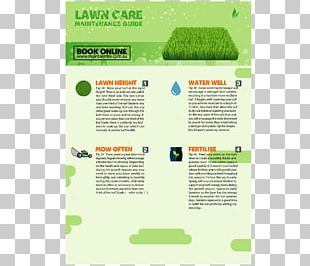 Lawn Advertising Business Plan Flyer Sod PNG
