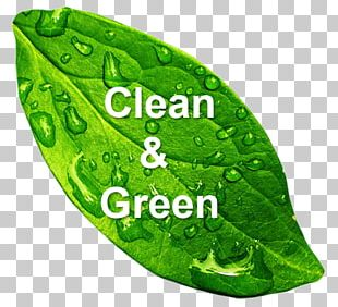 Green Cleaning Natural Environment Environmentally Friendly Cleaner PNG