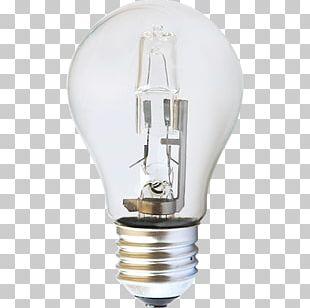 Incandescent Light Bulb Lighting Halogen Lamp LED Lamp PNG