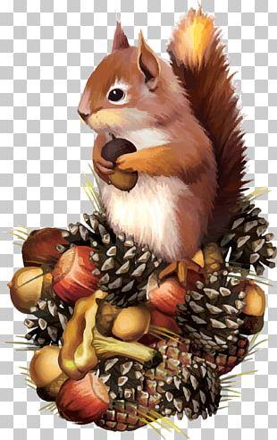 Red Squirrel Chipmunk PNG