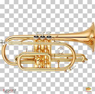 Soprano Cornet Musical Instruments Bore PNG
