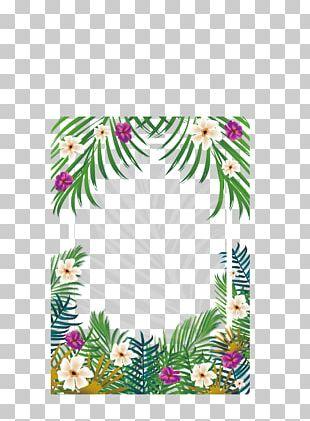 Tropics PNG