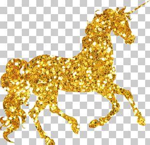 Unicorn Twilight Sparkle Birthday Party Wedding Invitation PNG