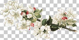 Floral Design Cut Flowers Honey Collage PNG