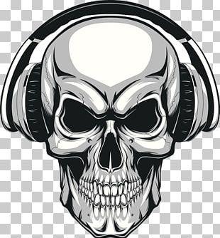 Skull Human Skeleton Illustration PNG