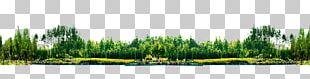 Landscape Park PNG