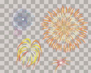 Graphic Design Close-up Petal Pattern PNG