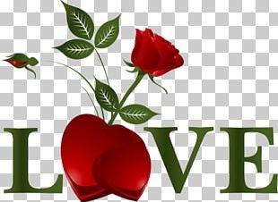 Valentine's Day Love Romance PNG