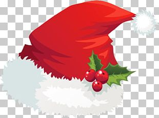 Christmas Santa Claus Hat Mistletoe PNG