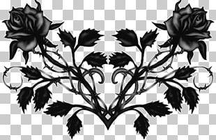 Black Rose Flower Drawing PNG