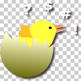 Cygnini Goose Beak Duck Bird PNG