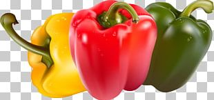 Bell Pepper Juice Vegetable Piquillo Pepper Chili Pepper PNG
