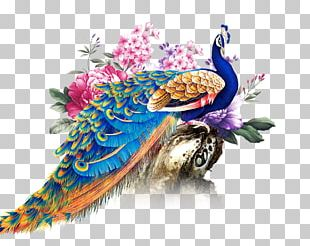 China Paper Peafowl PNG