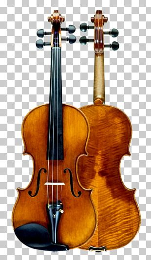Baroque Violin Double Bass String Instruments Cello PNG