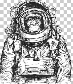 Chimpanzee Monkeys And Apes In Space PNG