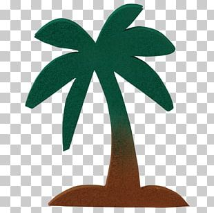 Fruit Tree Arecaceae Pine PNG
