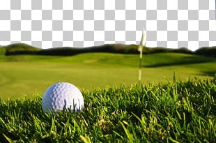 Golf Display Resolution High-definition Television PNG