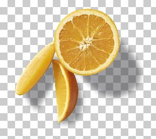Peel Citric Acid Citrus PNG