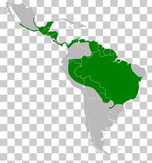 United States Of America French Guiana Southern Cone Central America Caribbean PNG