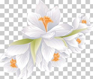 Flower Bouquet Portable Network Graphics Floral Design PNG